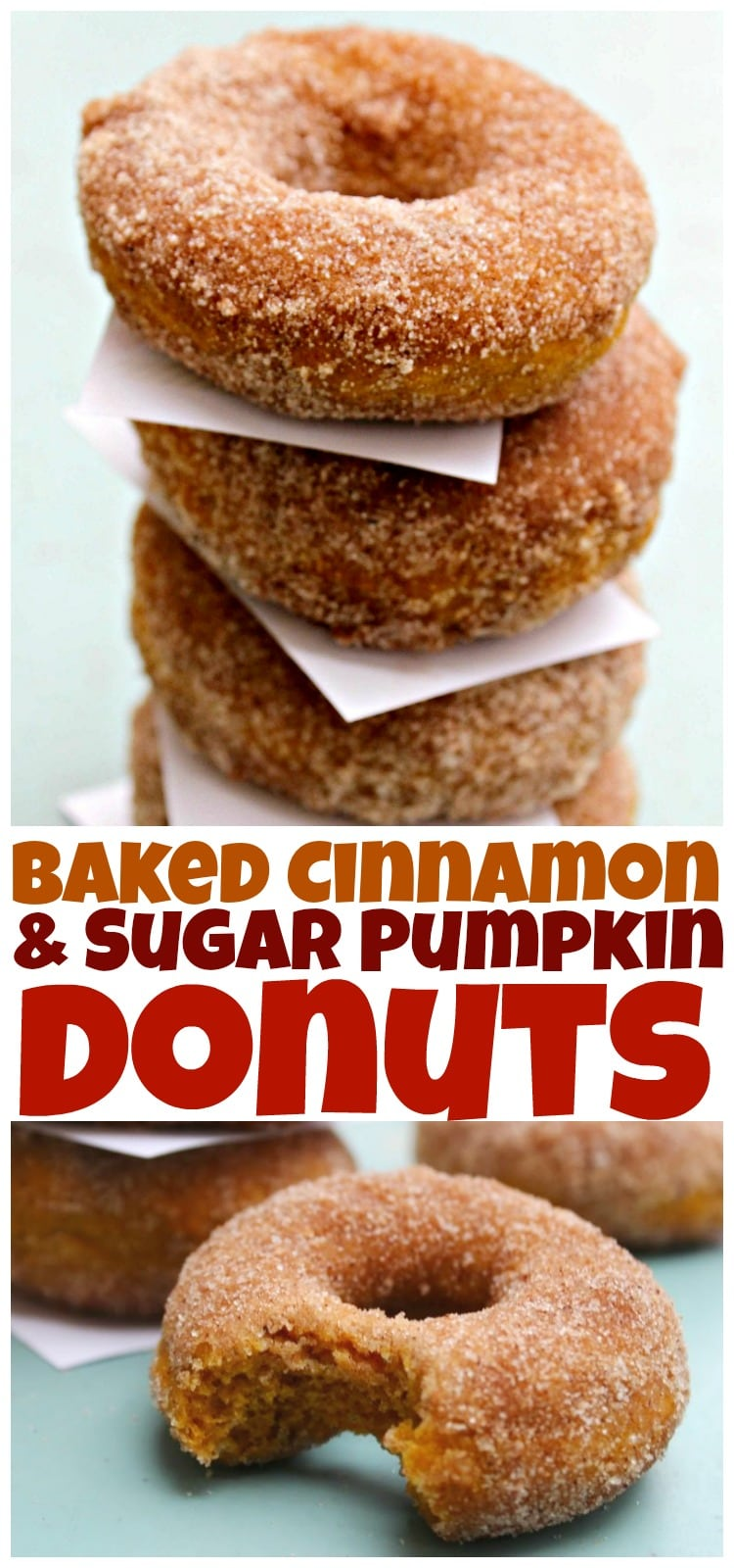 Baked Cinnamon & Sugar Pumpkin Donuts - An easy recipe forbaked pumpkin donutscoated in cinnamon-sugar. Best fall treat, of course, next to PSL.