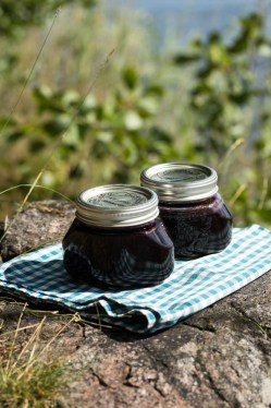 Blueberry jam-16