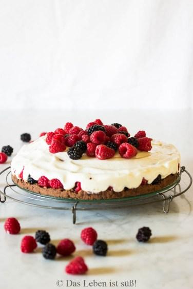 Himbeer-Joghurt-Kuchen (25 von 34)