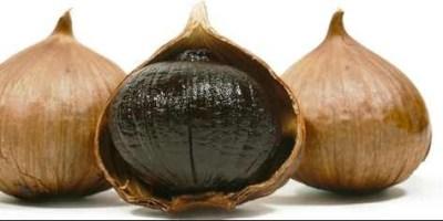 manfaat bawang hitam untuk kecantikan