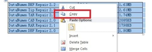 How to copy tables from word to excel data recovery blog right click and select copy ibookread Download