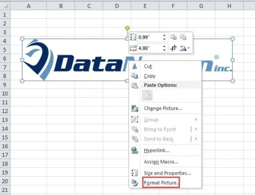 how to keep a picture in a cell in excel