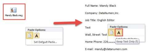 """Select """"Keep Text Only"""" to Insert Contact Info"""