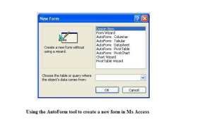 Use The Autoform Tool To Create A New Form In Ms Access