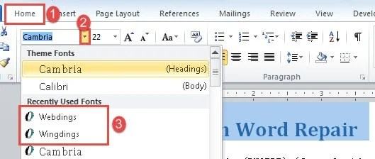 """Click """"Home""""->Choose Font Type"""