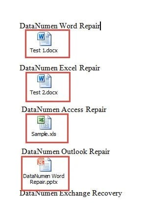 Word Document with Embedded Files
