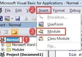 """Click """"Normal""""->Click """"Insert""""->Click """"Module"""""""