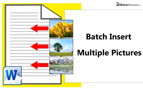 how to put multiple pictures in word document