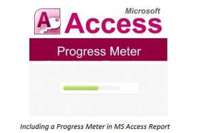 Including A Progress Meter In MS Access Report