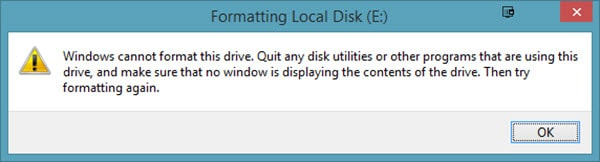 """Windows cannot format this drive"" Error"