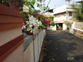 redmi-note-5-pro-camera-blur-review