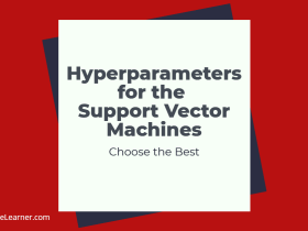 Hyperparameters for the Support Vector Machines