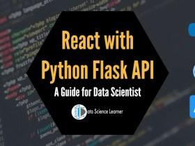 React with Python Flask API