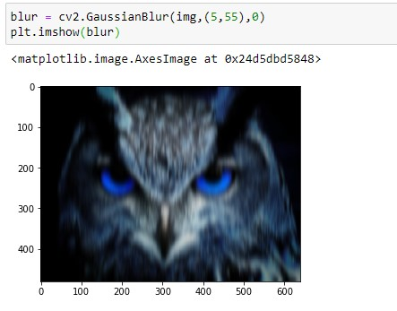 Gaussian Blurred Owl Image