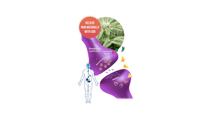 Nature's Boost CBD Gummies Benefits