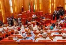 Photo of Benue: Senate restores Mata, Mbagwa, Agasha constituencies