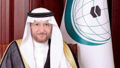 Photo of OIC approves financial assistance for 15 projects in Nigeria, others