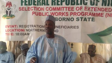 Photo of 774k jobs: Borno flags off registration for 27,000 youths