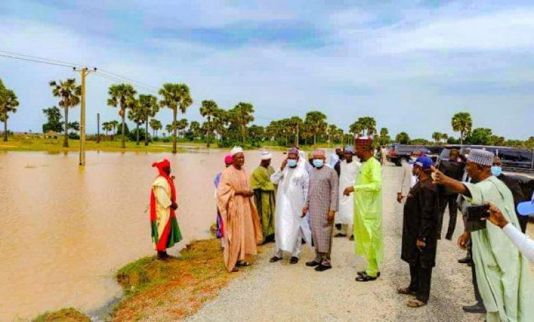 Agriculture: We won't be deterred by flood - Kebbi gov
