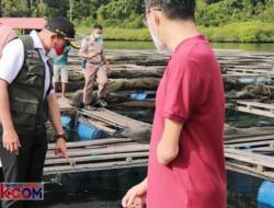 Ikan Kerapu di Sumbar Diekspor 20 Ton ke Hongkong