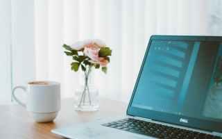 black and gray dell laptop beside white ceramic mug flower