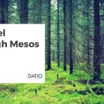 A Travel Through Mesos