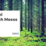 A Travel Through Mesos