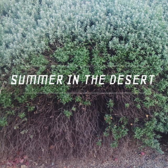 summer desert, summer cookbook, summer fashion, summer style, desert, lookbook