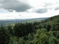 Blick zur Eifel