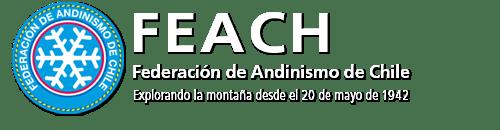 logo_feach