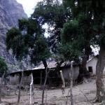 Aconcagua014