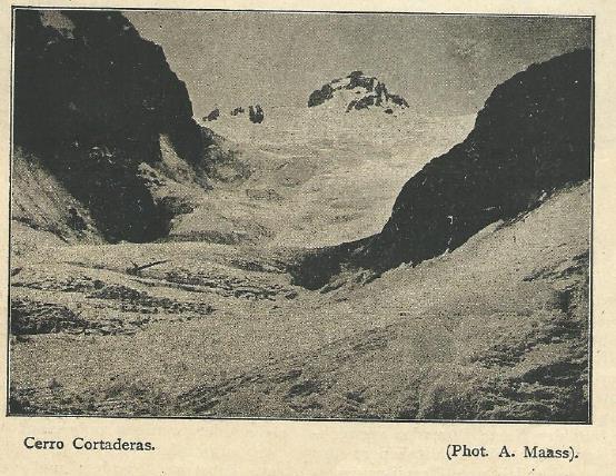 Cortaderas1