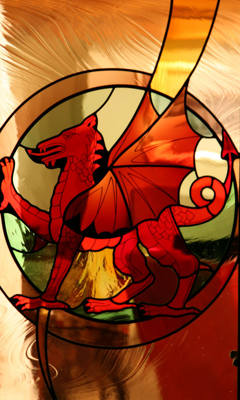 Welsh Dragon door panel