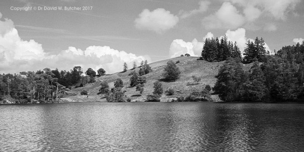 Tarn Hows Skyscape, Coniston, Lake District