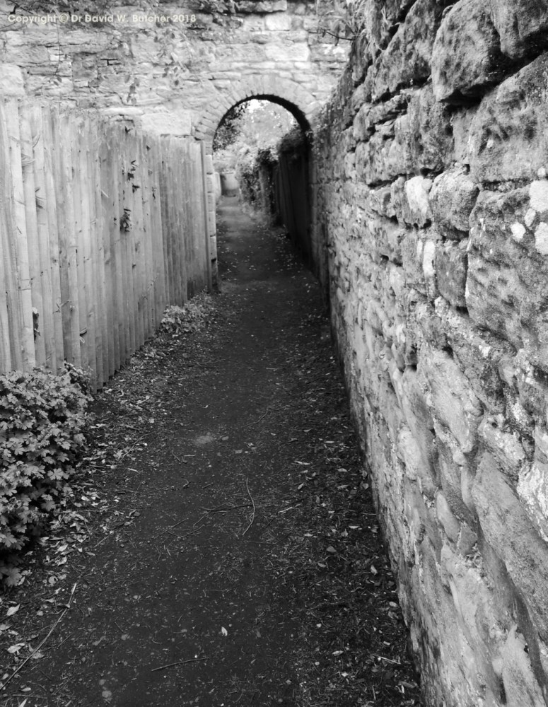 Warkworth Ginnel