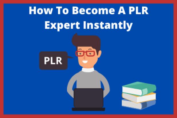 PLR On PLR Review