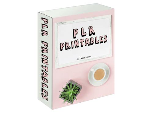 PLR Printables Review - Software Box