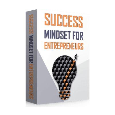 Success Mindset For Entrepreneurs - SW Box