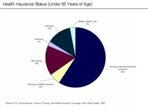 U.S. Health Insurance Status (Under 65)