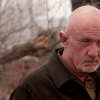 breaking bad mike ehrmantraut demise
