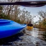 kayaking thomas creek florida