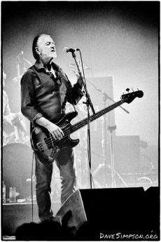 AUCKLAND, NEW ZEALAND - DECEMBER 04: Steve Kilbey from The Church performs as part of the Starfish 30th Anniversary Tour at Auckland Town Hall on December 4, 2018 in Auckland, New Zealand. (Photo by Dave Simpson/WireImage)