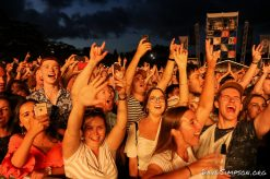 AUCKLAND, NEW ZEALAND - JANUARY 12: Fans cheer while watching Mumford & Sons perform on stage at The Outer Fields at Western Springs on January 12, 2019 in Auckland, New Zealand. (Photo by Dave Simpson/WireImage)