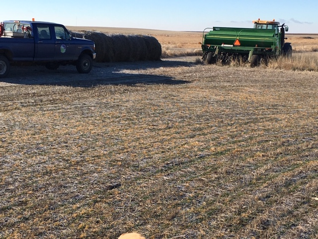 Re-planting CRP in Winter frozen ground