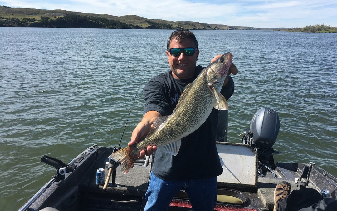 25 inch Walleye Released on Lake Sharpe
