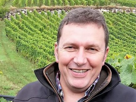 Alsace Winemakers Focus On Healthy Soils and Terroir