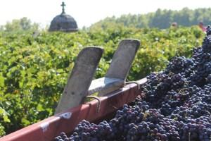 vins-blaye-cotes-de-bordeaux-audacieux2