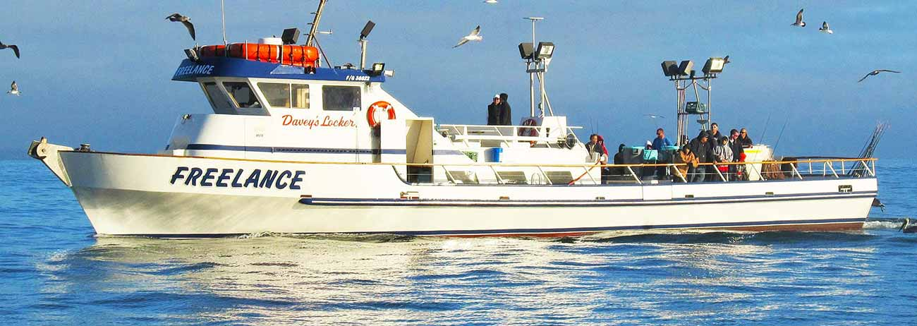 Fishing Charters San Diego Visitors Amp Boat Rentals
