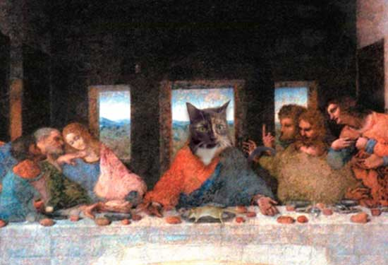 The Cats Supper
