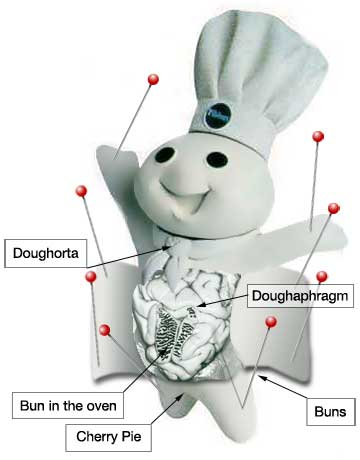 Doughsection